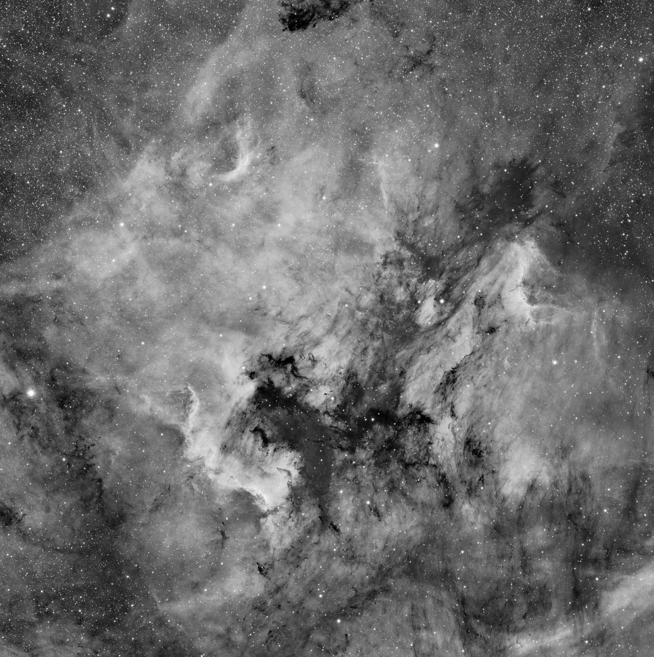 NGC7000 (Ha) et ses nuages de poussières en grand champ (3°30'x3°30') NGC7000Ha1E33